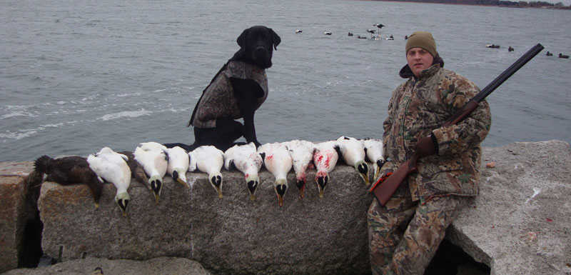 Sea Duck hunting New England: MA, RI, ME